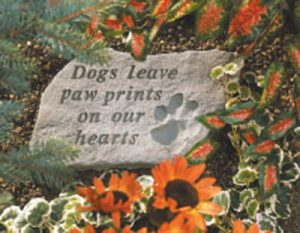 60220 Dogs leave pawprints...-0