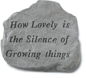 62420 How Lovely Is The Silence Of Growing...-0