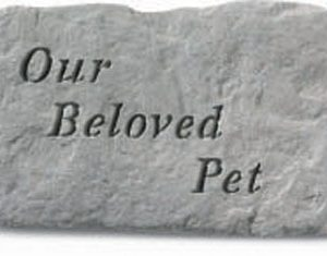 62720 Our Beloved Pet-0