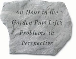 63120 An Hour In The Garden Puts Life's...-0