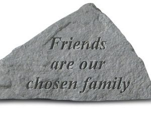 71520 Friends Are Our Chosen Family-0