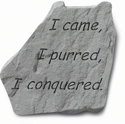 """91520 """"I came, I purred, I conquered""""-0"""