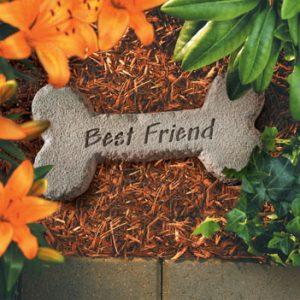 92820 Dog Bone w/ Best Friend-0